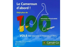 CAMAIR-CO (Nsimalen International Airport )